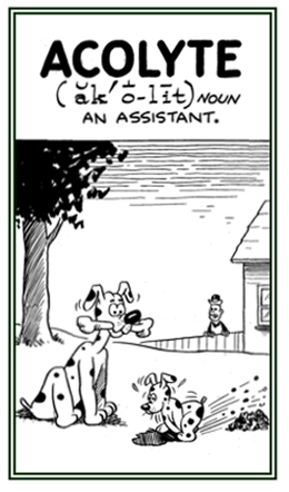 An assistant or follower.
