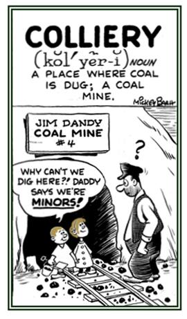 A place, lr a coal mine, where it is dug.