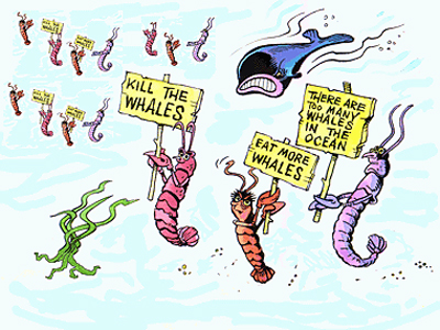 Plankton are demonstrating against planktivorous whales.
