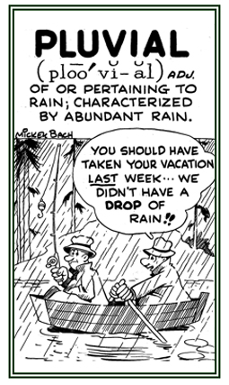 A reference to rain or characterized by abundant rain.