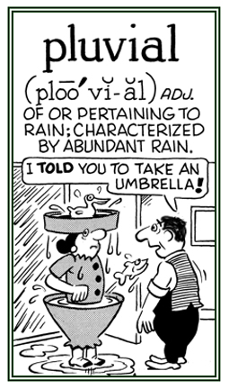 A reference to a lot of rain or an excessive amount of rain.
