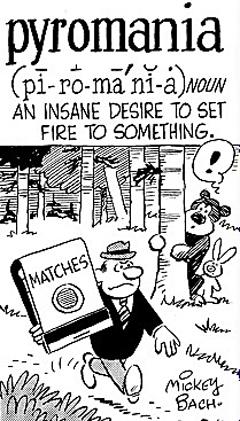 Insane desire to set fires.