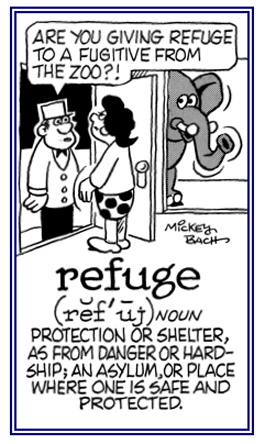 Protection or shelter.