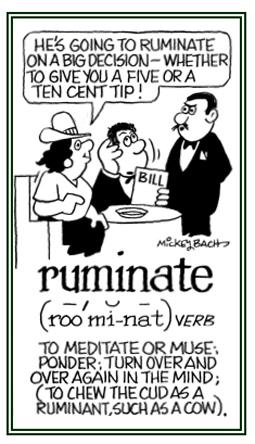 Ruminate over