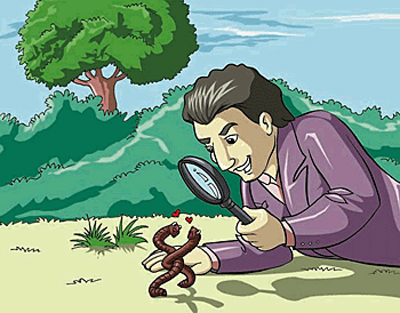 A zoologists is using a magnifying glass to observe insects.